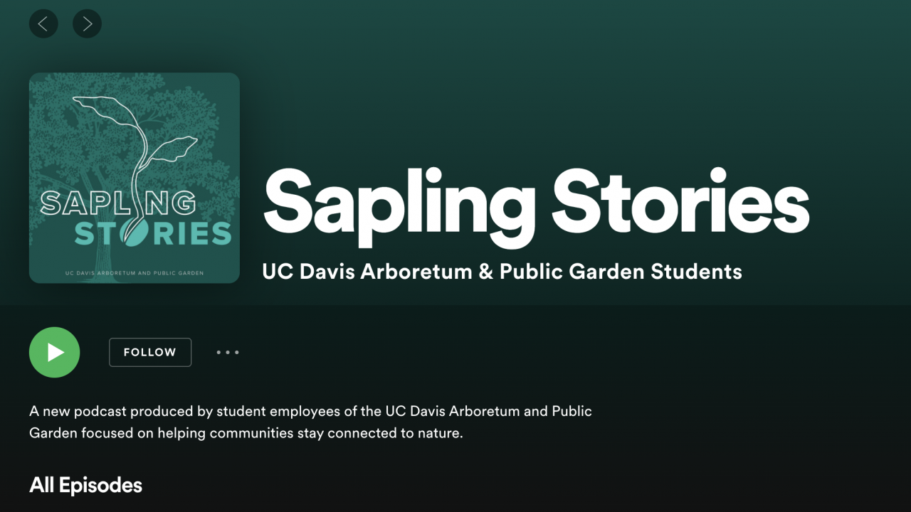 Image of spotify page featuring Sapling Stories by the UC Davis Arboretum and Public Garden's Learning by Leading Museum Education interns.
