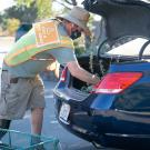 Image of Nursery Manager Taylor Lewis loading plants into a car trunk.