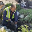 Image of Levy Hernandez working to improve the environment in LA.