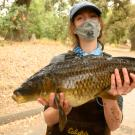 UC Davis student with a carp that's part of a research project taking place in the UC Davis Arboretum Waterway.