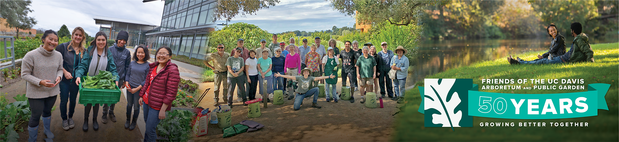 "Images of visitors, students and volunteers at the Arboretum with the Friends 50th Anniversary logo and caption ""growing better together"""